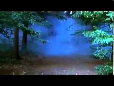 Enya   The Mists Of Avalon   Viviane   YouTube