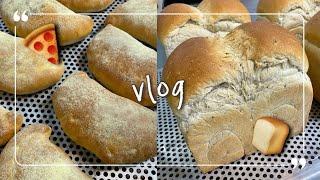 Vlog |  압력밥솥으로 밥짓고  야채계란부침만들기,…