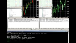 Metatrader 4 JSON RPC with RabbitMQ and MySQL
