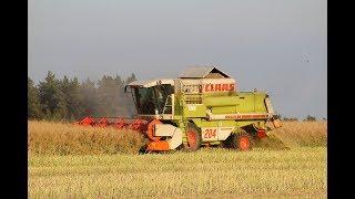 # Żniwa 2018# Rzepak# Claas 204# Harvest in Poland#