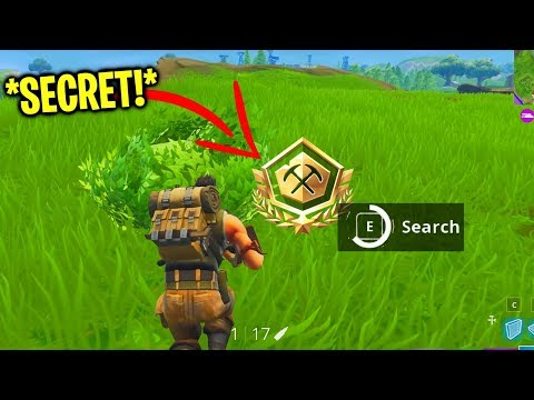 how to get alpha tournament shiny pin the easy way on Fortnite...