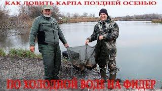 Как ловить карпа поздней осенью по холодной воде на фидер в ноябре Советы