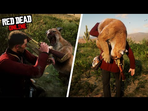 The ONLY 3 Red Dead Online Hunting Locations You NEED! (RDR2 Online 2020)