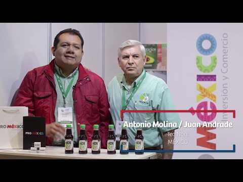 EXPO ALADI- Perú 2018 Testimonios