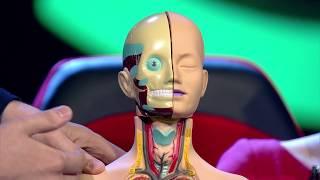 Мы и наука. Наука и мы. Нанороботы победят все болезни. Эфир 30.03.2018
