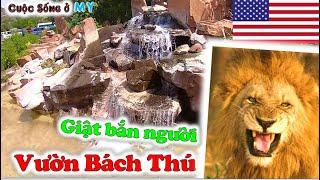 ❀//Vlog 225// Khám Phá Sở Thú ở Mỹ có gì Hot so với Thảo Cầm Viên ở Việt Nam - Du Lịch Nước Mỹ - T1