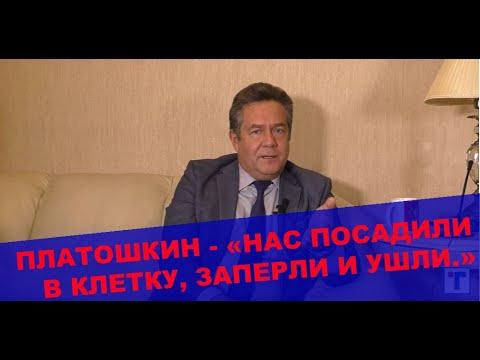 Николай Платошкин. Путин,