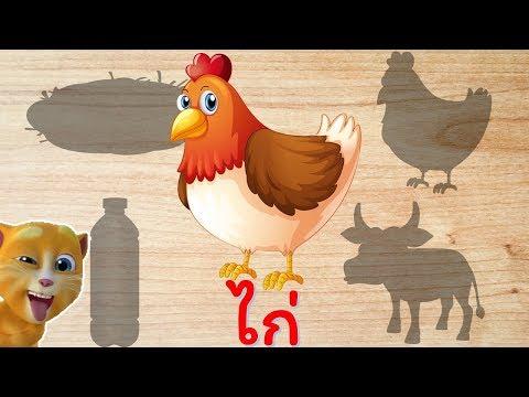 เกมจับคู่บนกระดานไม้ รูป ไก่ ไข่ ขวด ควาย พร้อมสอนอ่าน