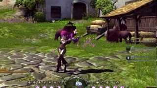 Dragon Nest - Acadabra
