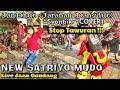 Penonton Gelut---Syantiik versi JANDHUT (Jaranan Dangdut)--New Satriyo Mudo Live Jaan Gondang