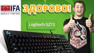 LOGITECH G213 - пролей на неё пот сражений!