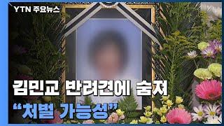 """배우 김민교 반려견에 물린 80대 숨져...""""처벌 가능성"""" / YTN"""