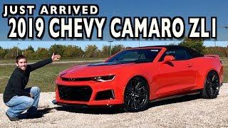 Just Arrived: 2019 Chevrolet Camaro ZL1 on Everyman Driver