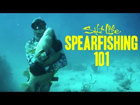 Spearfishing 101 | Salt Life