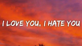 Little Simz - I Love You, I Hate You (Lyrics)