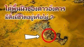 ความหวังแห่งการค้นพบสิ่งมีชีวิตบนดาวอังคาร