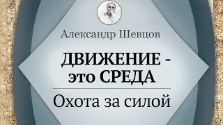 Движение - среда. Охота за силой Шевцов Александр