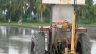 2. IRRI Agronomy Challege: Laser Leveling (4 January 2012)