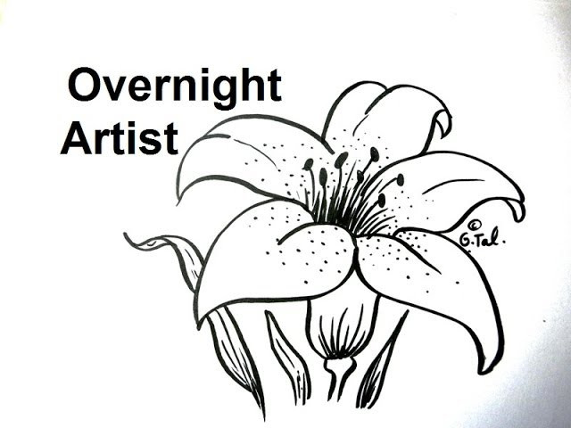 How To Draw Flowers Draw A Lily Flower Easy Step By Step Youtube