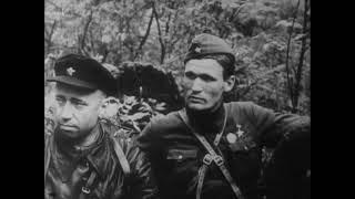 Партизанское движение в годы Великой Отечественной