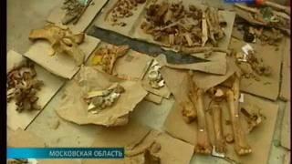 Археологические раскопки в Бородине  впервые с 1812 года