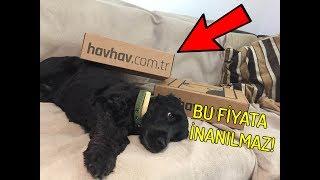 MUHTEŞEM HAVHAV KUTULARI! || Temmuz Ayı HavHav Kutuları