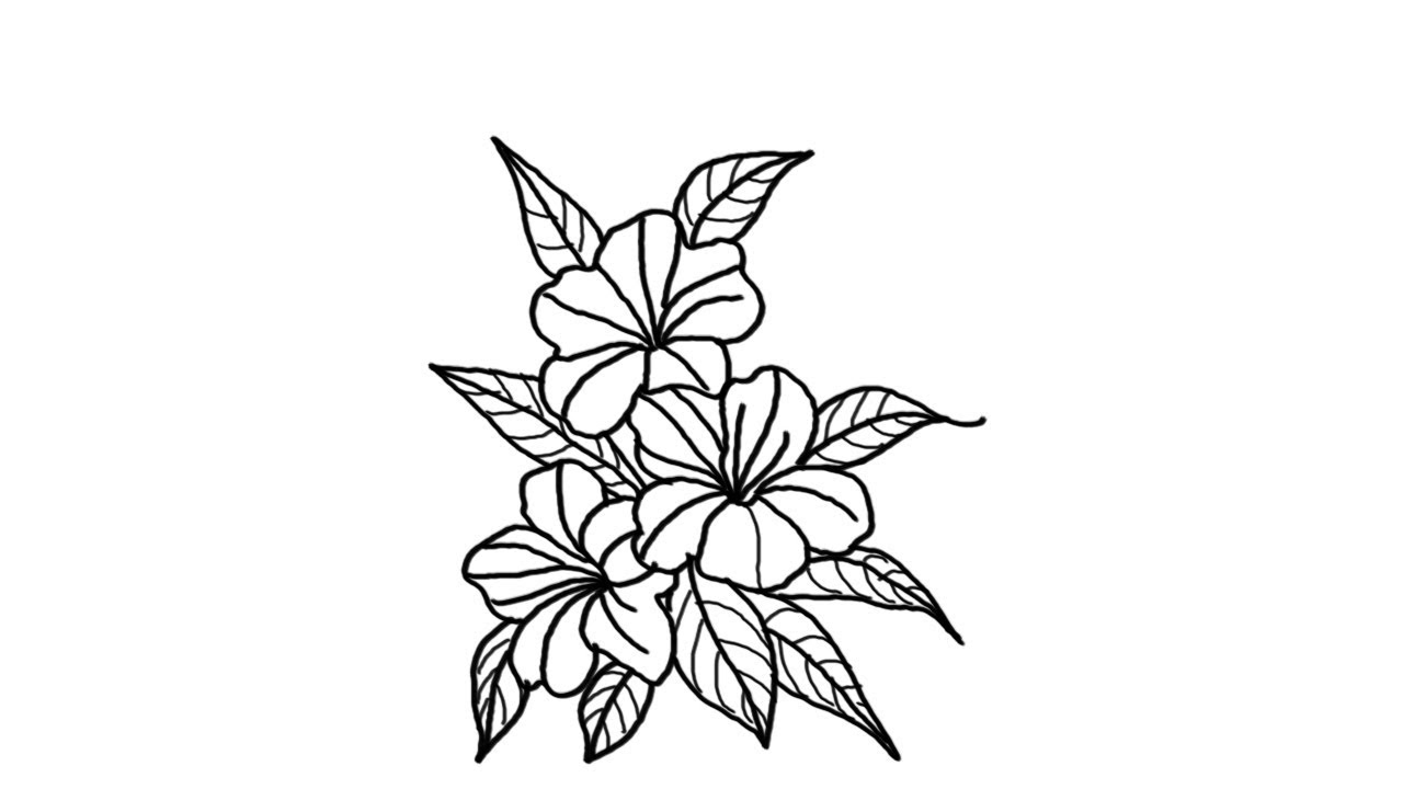How To Draw A Beautiful Flower Bunch Youtube