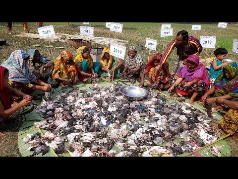 300 Pigeon Dry Curry Cooking To  Celebrate New Year 2019 & Share Food With Whole Village People