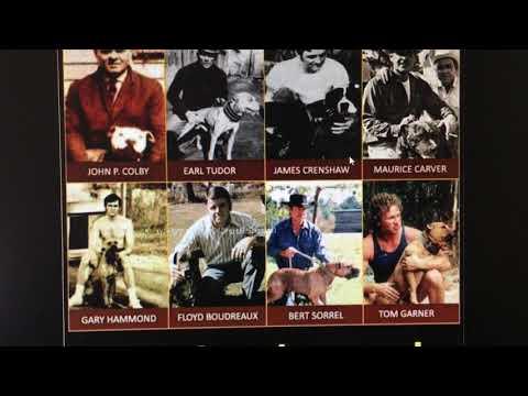 ORIGINAL HISTORY OF PIT BULLS, PITS, APBTS, PIT BULLDOGS