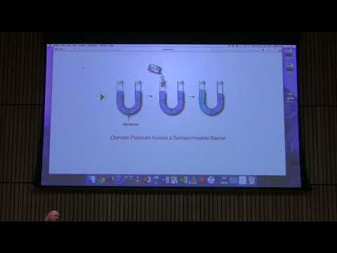 Lecture #34 Ahern's BB 451 - Membrane Transport