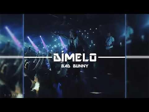 Bad bunny Dimelo