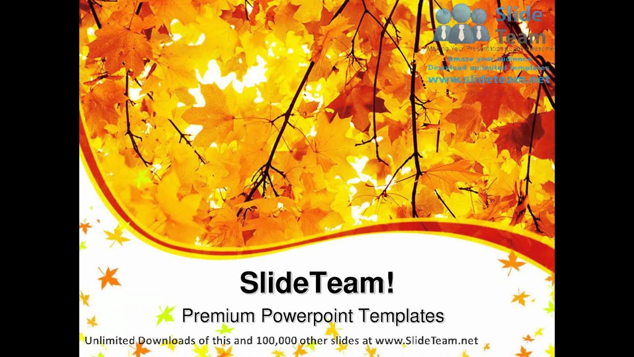 Maple in autumn forest nature powerpoint templates themes and maple in autumn forest nature powerpoint templates themes and backgrounds graphic designs youtube toneelgroepblik Gallery