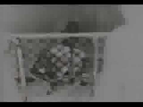 Ministry - Stigmata [Music Video]