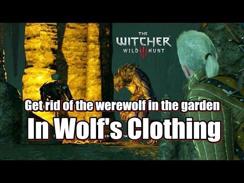 The Witcher 3 Wild Hunt In Wolf 39 S Clothing Werewol Doovi