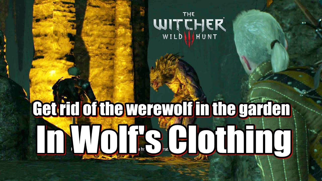 the witcher 3 how to get menges key