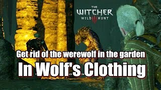 The Witcher 3 Wild Hunt In Wolf