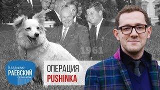 Операция Pushinka или Белка и Стрелка звездные собаки