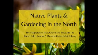 Native Plants & Gardening in the North