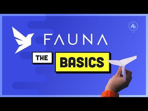 FaunaDB Basics - The Database of your Dreams