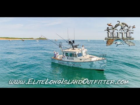 Montauk Fishing HD June 2018 (Elite Long Island Charters)