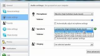Wie man z.B. das Mikrofon in Skype einstellen kann