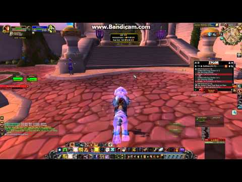 World of Warcraft: Me buying the swift spectral tiger