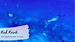 Sculptures on the Bottom of the Sea | KOH KOOD | KOH RAET | THAILAND | 12 Month Travel (VLOG Ep. 48)