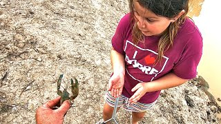 Catching yabbies with Holly