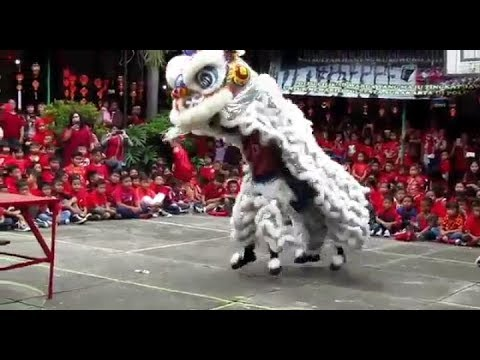 Atraksi Barongsai Sambut tahun Anjing 2018