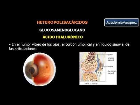 Polisacáridos: Heteropolisacaridos