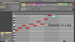 Music Theory for Electronic Musicians: What is Diatonic