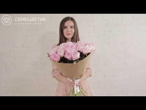 Розовые пионы сорта Сара Бернар