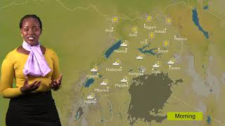 Weather Forecast for Friday 08 02 2019
