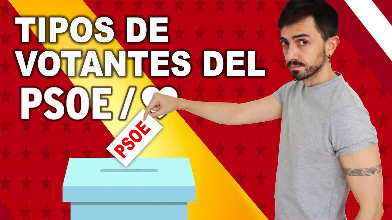 Download Los 9 tipos de VOTANTES del PSOE   InfoVlogger